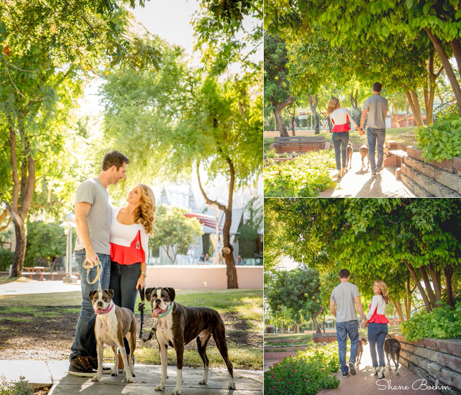 Engagement Couple with Boxer Dogs
